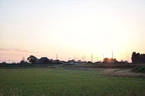 s-IMG_3990.jpg
