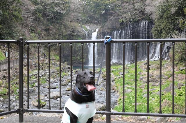 白糸の滝マル