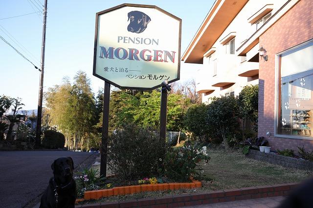 本日の宿モルゲン
