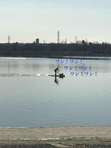 2019-01-19_13-33-33_778.jpg