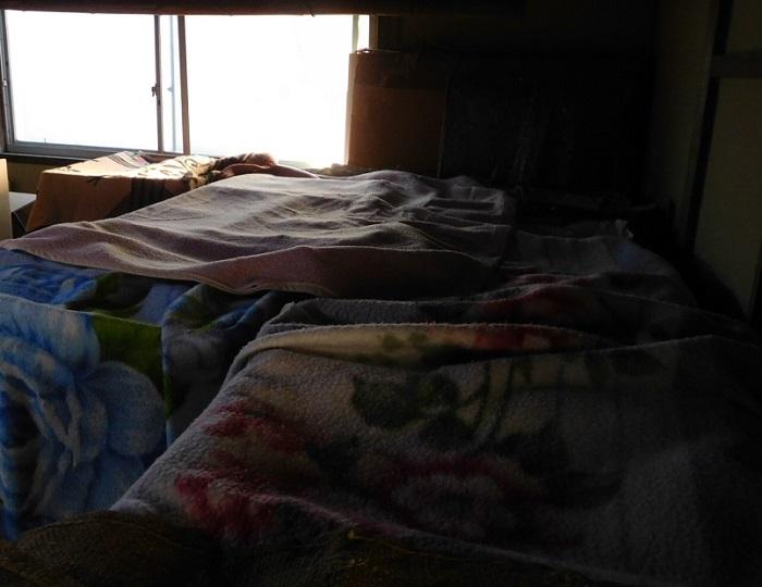 冬眠いよかん3101 (2)