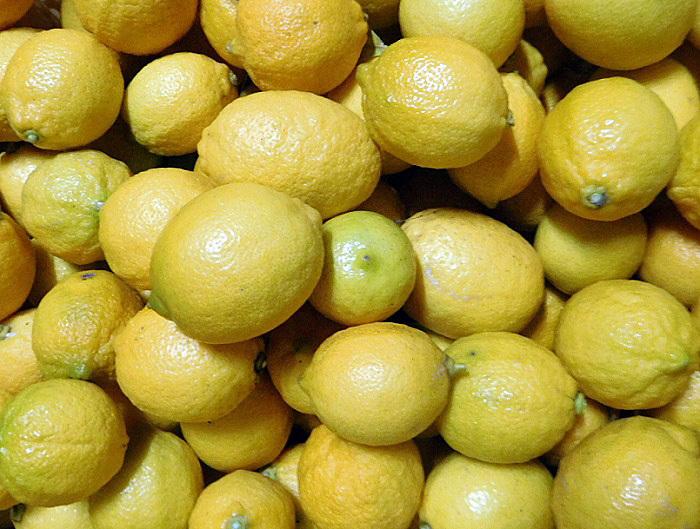 レモン出荷3101