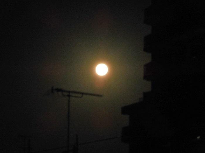 睦月の満月3101