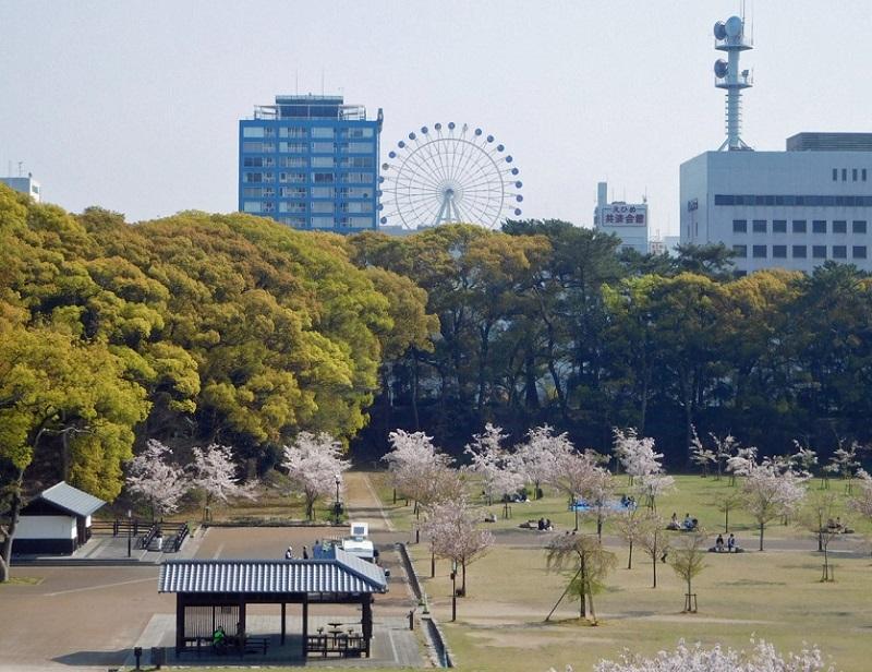 桜も散りはじめた中で3104 (2)