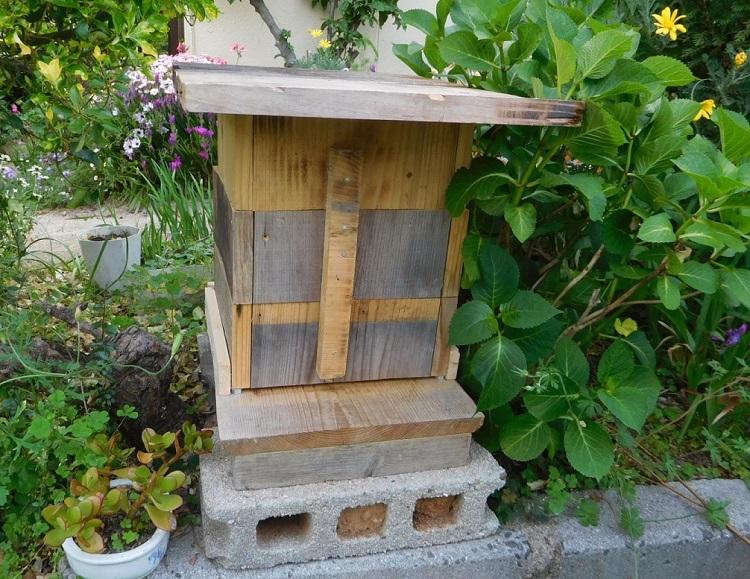 新ミツバチ巣箱0005