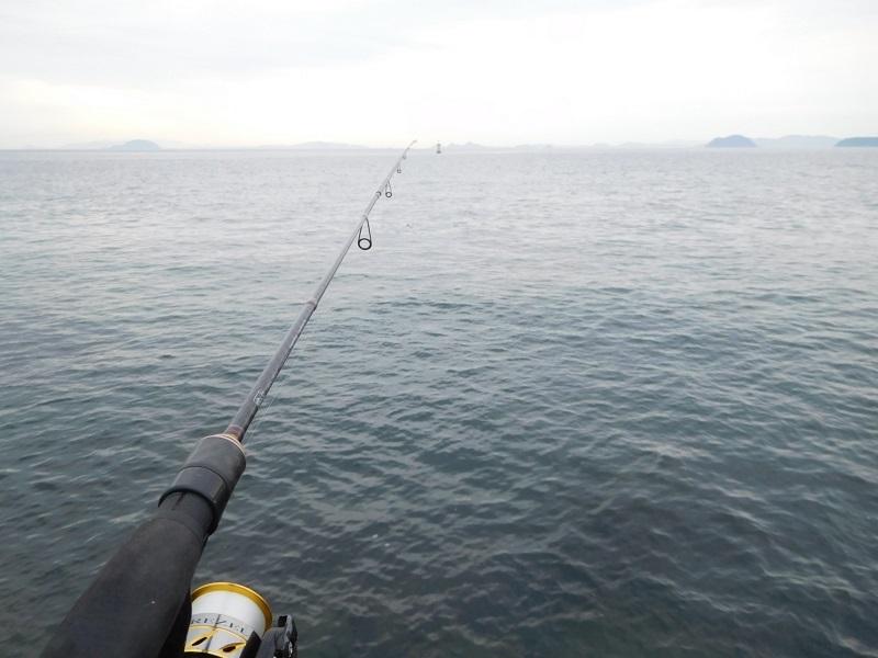 令和秋の釣り0109 (1)