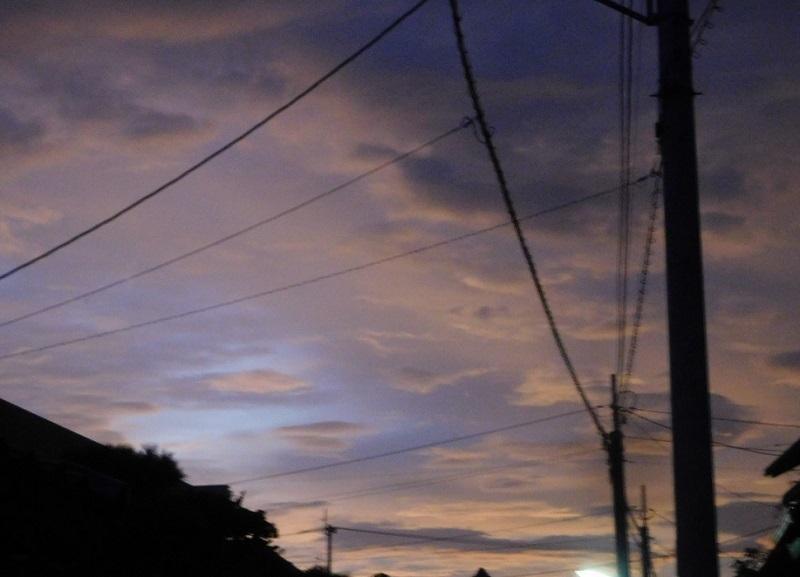 秋雨前0109 (2)