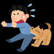 pet_kamu_dog.png