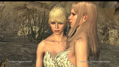Dragons Dogma Online__9