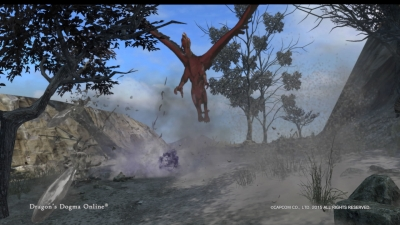 Dragons Dogma Online__233