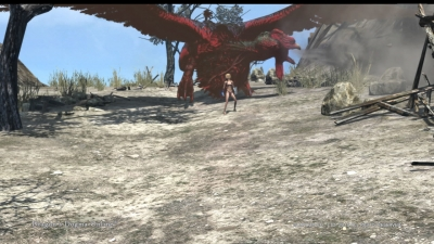 Dragons Dogma Online__174