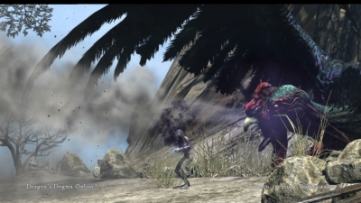 Dragons Dogma Online__169