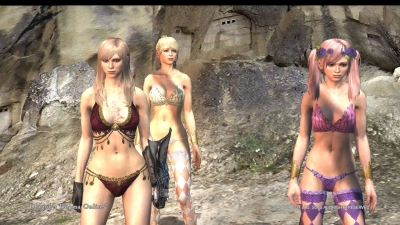 Dragons Dogma Online__103