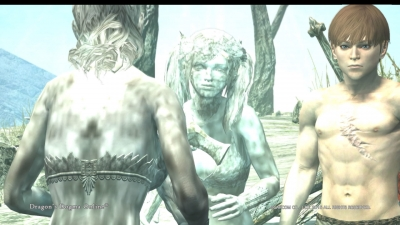 Dragons Dogma Online__130