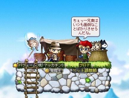 Maple_18390a.jpg