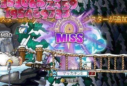 Maple_18393a.jpg