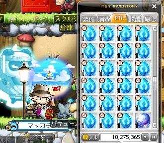 Maple_18472a.jpg