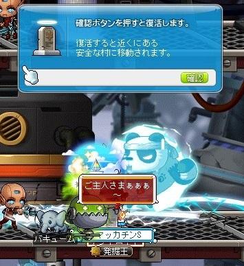 Maple_18508a.jpg