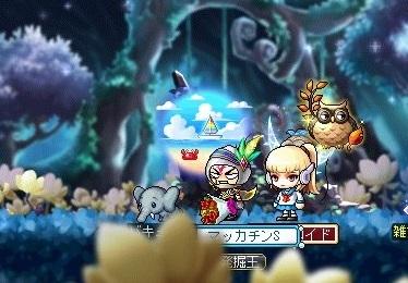 Maple_18609a.jpg