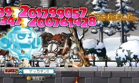 Maple_18624a.jpg