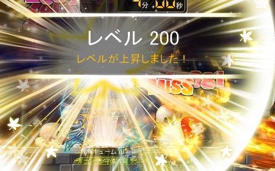 Maple_18665a.jpg