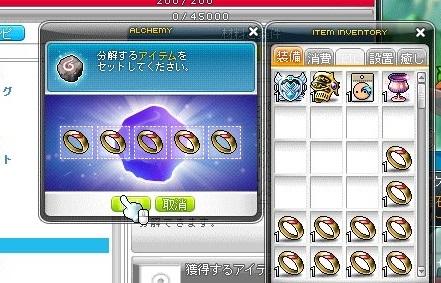 Maple_18668a.jpg