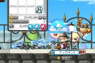 Maple_18702a.jpg