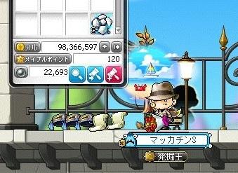 Maple_18732a.jpg