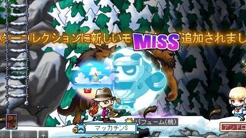 Maple_18794a.jpg