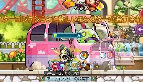 Maple_18838a.jpg