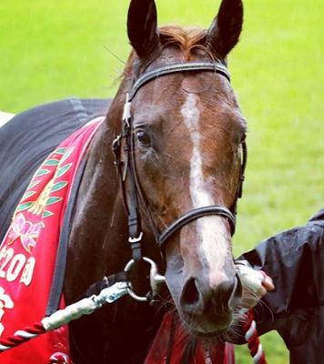 20181018manbaken-horse