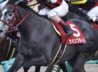 20181020manbaken-horse