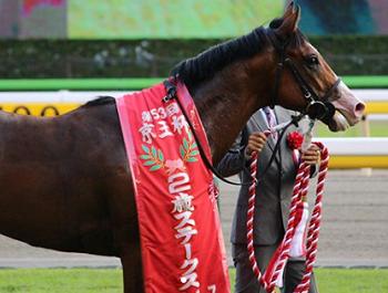 20181030manbaken-horse