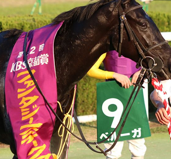20181031manbaken-horse