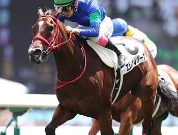 201811022manbaken-horse