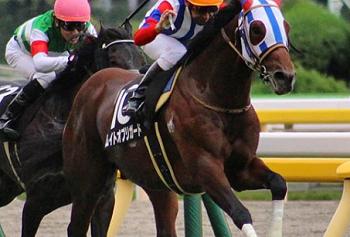 20181104manbaken-horse