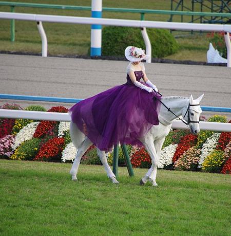 20181105manbaken-horse