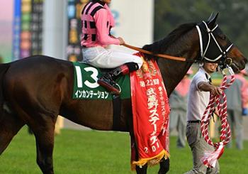 201811081manbaken-horse