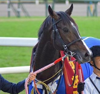 201811082manbaken-horse.png