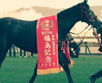 20181109manbaken-horse