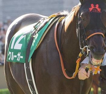 201811101manbaken-horse