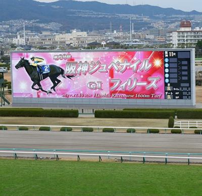 20181203manbaken-horse