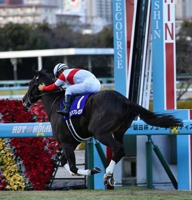 20181210manbaken-horse