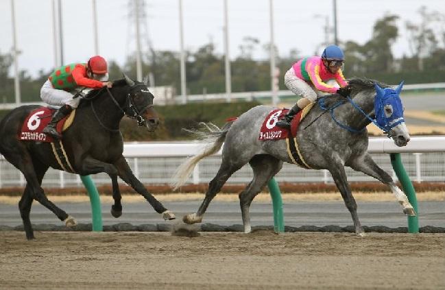 manbaken-horse21090117a