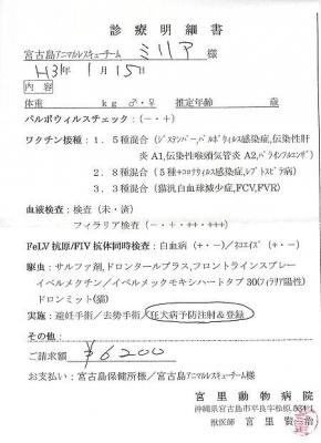 ミリア医療明細190115