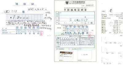 ミリア医療明細171205-2