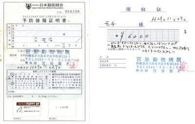 モチ医療明細111127 (1)