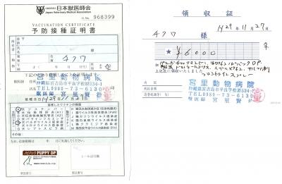 チクワ医療明細171127