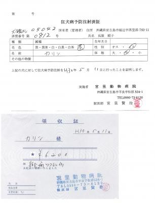 カリン狂犬病予防接種180511