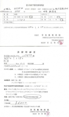 パピコ狂犬病予防接種190115